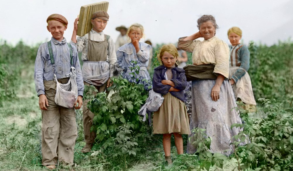 Динамика иммиграции в США в 19 веке