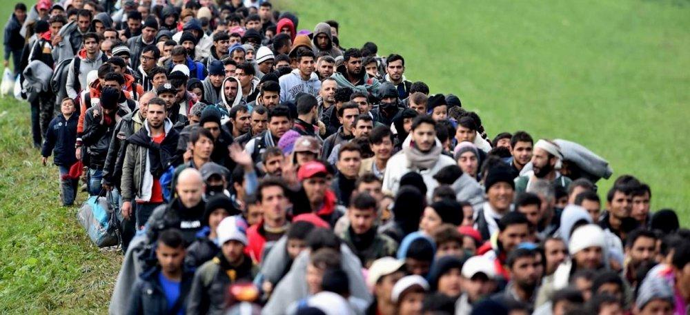 политическая роль иммигрантов