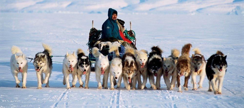 эскимосы в США
